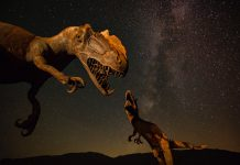 Financial Services Industry needs to Automate or Become Extinct
