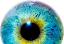 DeepMind's New AI Application Diagnosis Eye Disease Easier