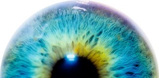 DeepMind's New AI Application Diagnosis Eye Disease Easier