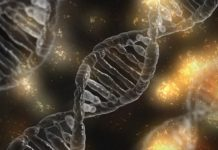 First Molecules Discovered by Using Artificial Intelligence