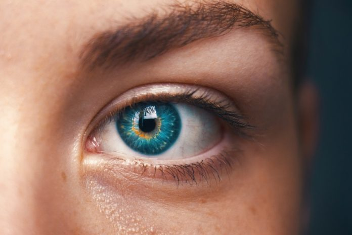 Deep Learning Method Outperforms AI in the Detection of Glaucoma Progression
