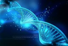 Scientists Develop First Ever Artificial Intelligence Made DNA
